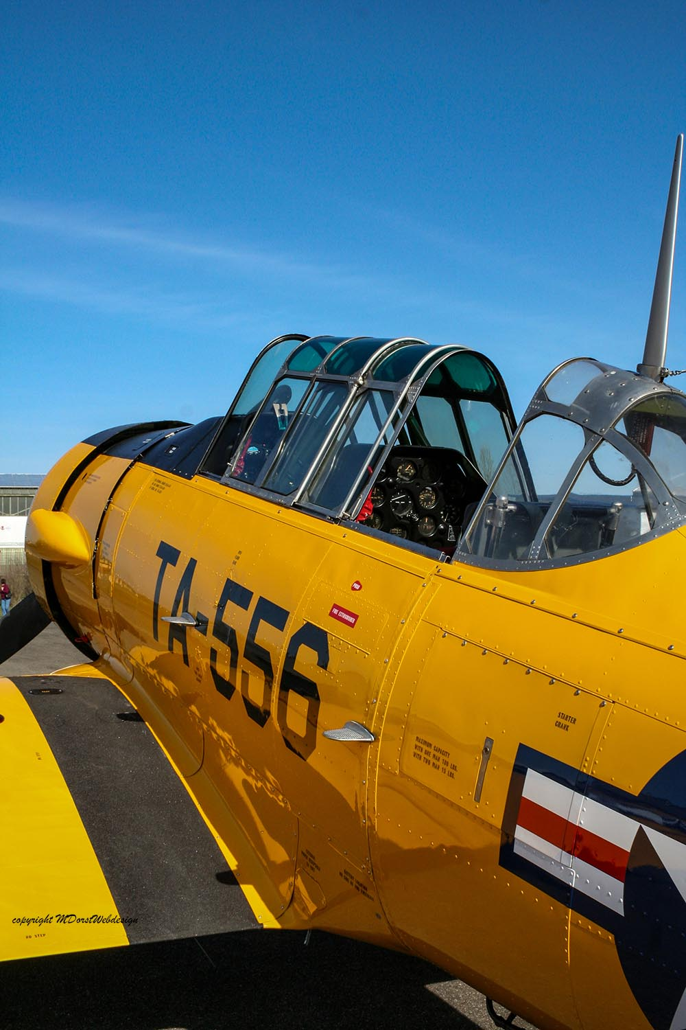NAA_AT-6_D-FITE_2010-03-19_-43.jpg