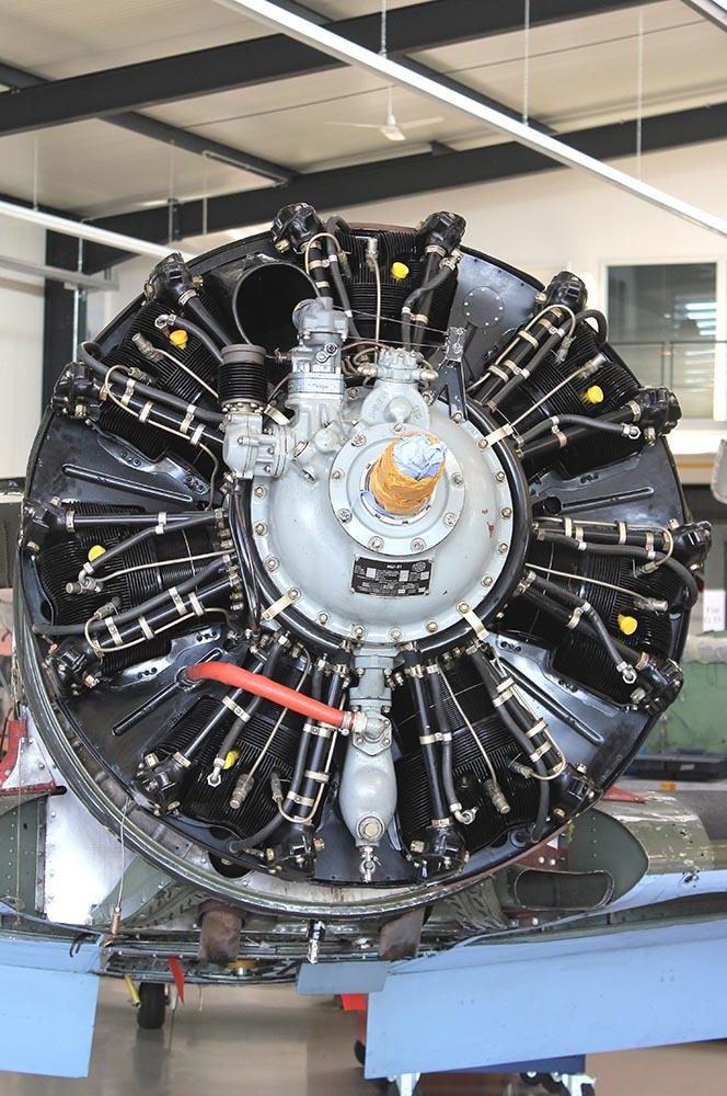Yak-11_D-FYWM_2012-09-211.jpg
