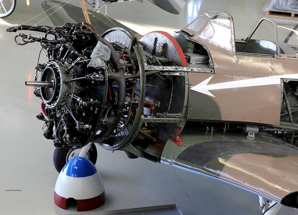 Yak-11_D-FYWM_2012-12-192.jpg